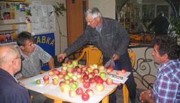 Купить Саженцы плодово-ягодных деревьев